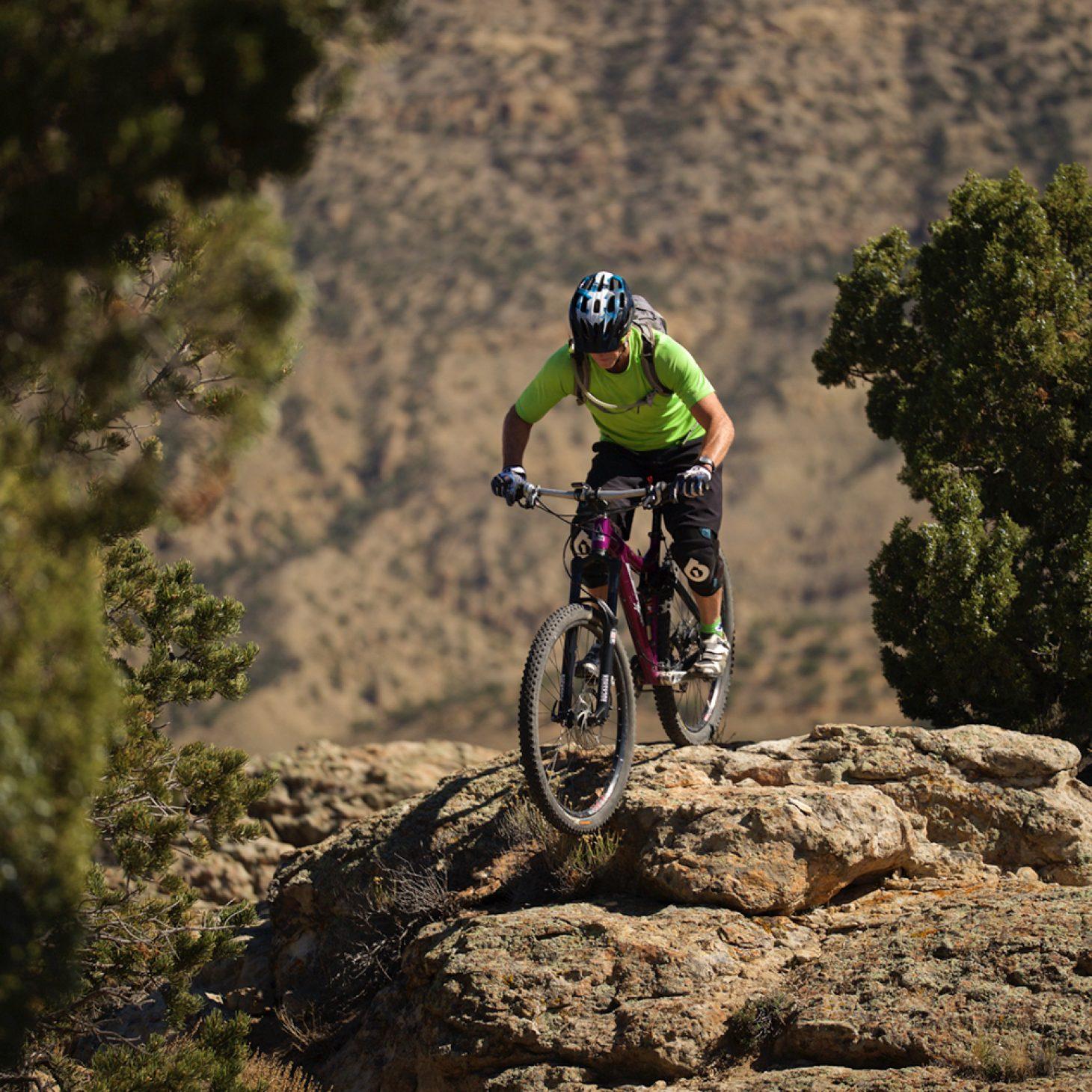 Lenz sport mountain bike