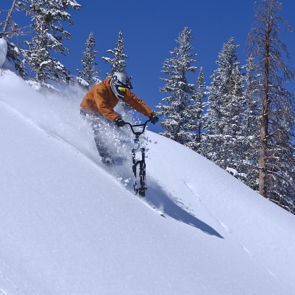Ski bike action powder COPA 1000px