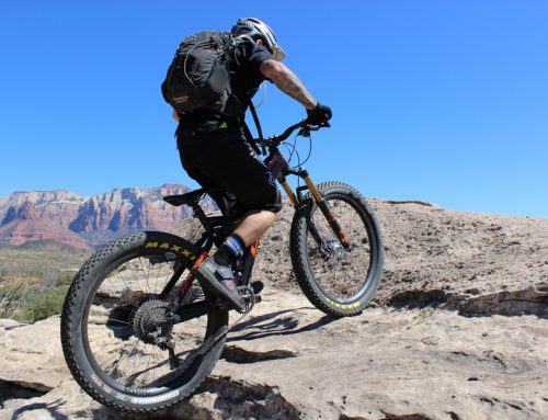 Behemoth 29+ on the Guacamole Trail