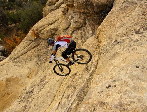 Mountain bike desert